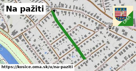 ilustrácia k Na pažiti, Košice - 321m