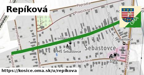 ilustrácia k Repíková, Košice - 651m