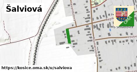 ilustrácia k Šalviová, Košice - 72m