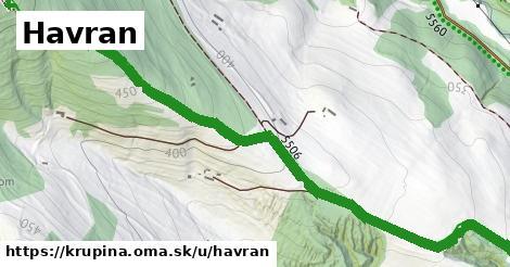 ilustrácia k Havran, Krupina - 2,3km