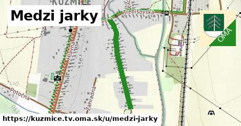 ilustrácia k Medzi jarky, Kuzmice, okres TV - 572m