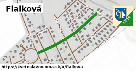ilustrácia k Fialková, Kvetoslavov - 400m
