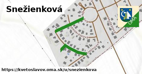 ilustrácia k Snežienková, Kvetoslavov - 327m