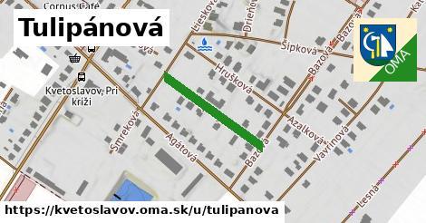 ilustrácia k Tulipánová, Kvetoslavov - 213m