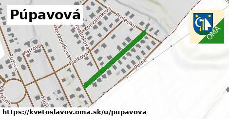 ilustrácia k Púpavová, Kvetoslavov - 271m