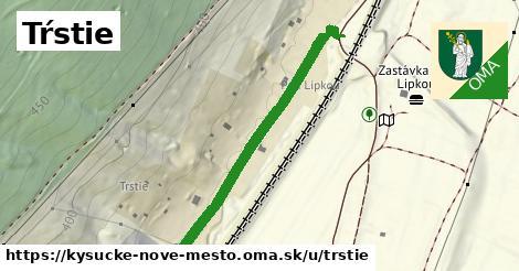 ilustračný obrázok k Tŕstie, Kysucké Nové Mesto