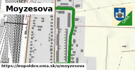 ilustračný obrázok k Moyzesova, Leopoldov