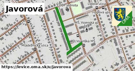 ilustrácia k Javorová, Levice - 356m