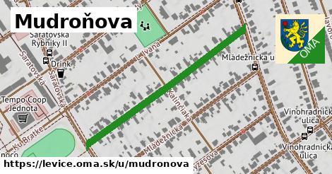 ilustrácia k Mudroňova, Levice - 446m
