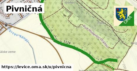 ilustračný obrázok k Pivničná, Levice