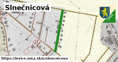ilustrácia k Slnečnicová, Levice - 135m
