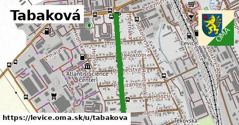 ilustrácia k Tabaková, Levice - 661m