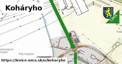 ilustrácia k Koháryho, Levice - 2,6km