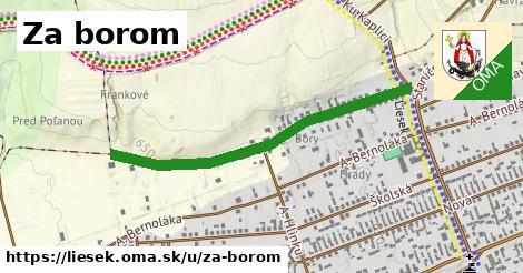 ilustrácia k Za borom, Liesek - 607m