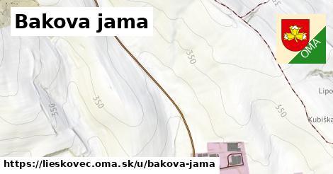 Bakova Jama, Lieskovec