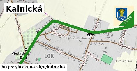 ilustrácia k Kalnická, Lok - 2,2km