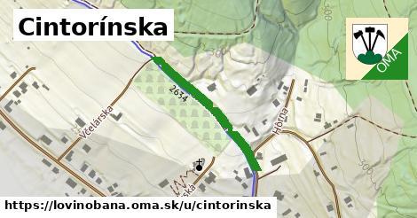 ilustrácia k Cintorínska, Lovinobaňa - 250m
