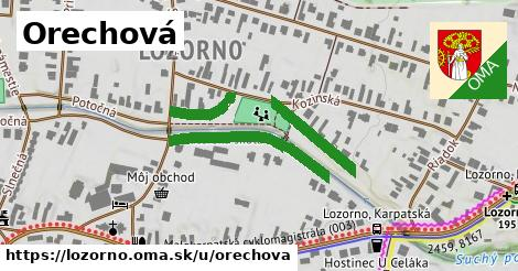 ilustrácia k Orechová, Lozorno - 428m