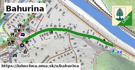 ilustračný obrázok k Bahurina, Ľubochňa
