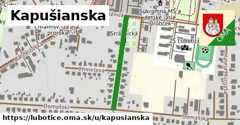 ilustrácia k Kapušianska, Ľubotice - 293m