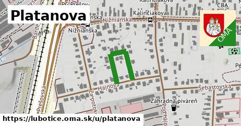 ilustrácia k Platanova, Ľubotice - 229m