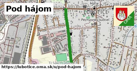 ilustrácia k Pod hájom, Ľubotice - 560m