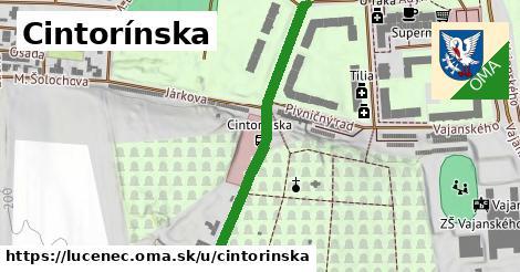 ilustrácia k Cintorínska, Lučenec - 408m