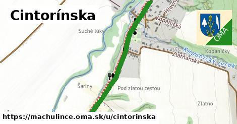 ilustrácia k Cintorínska, Machulince - 642m