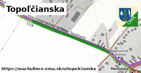 ilustrácia k Topolčianska, Machulince - 435m