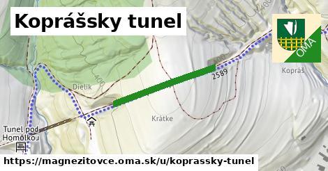 ilustrácia k Koprášsky tunel, Magnezitovce - 249m