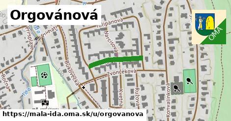 ilustrácia k Orgovánová, Malá Ida - 177m