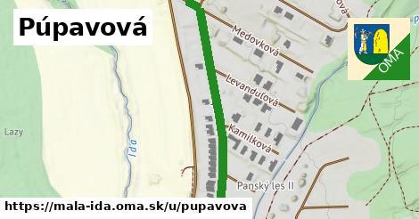 ilustrácia k Púpavová, Malá Ida - 554m