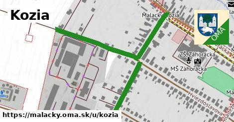 ilustrácia k Kozia, Malacky - 450m