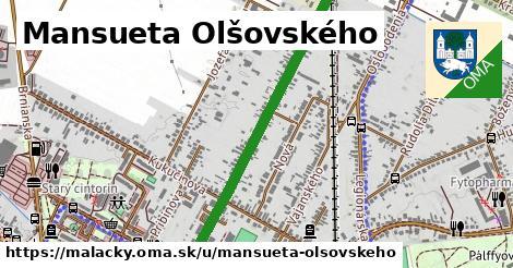 ilustračný obrázok k Mansueta Olšovského, Malacky