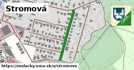 ilustrácia k Stromová, Malacky - 285m