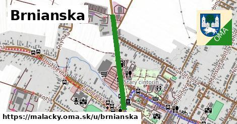 ilustrácia k Brnianska, Malacky - 662m