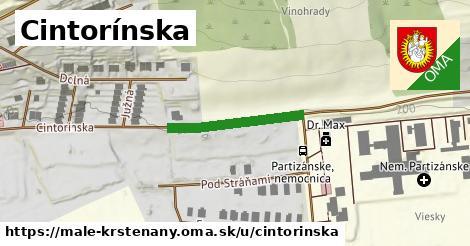 ilustrácia k Cintorínska, Malé Kršteňany - 217m