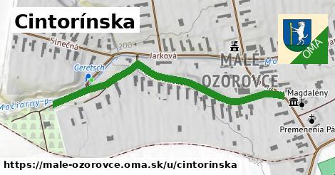 ilustrácia k Cintorínska, Malé Ozorovce - 563m