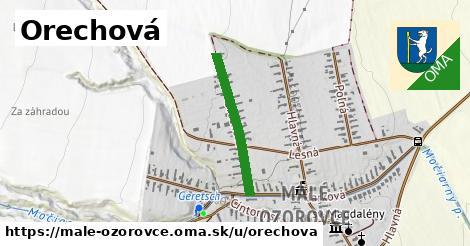 ilustrácia k Orechová, Malé Ozorovce - 444m