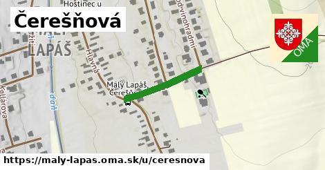 ilustrácia k Čerešňová, Malý Lapáš - 193m