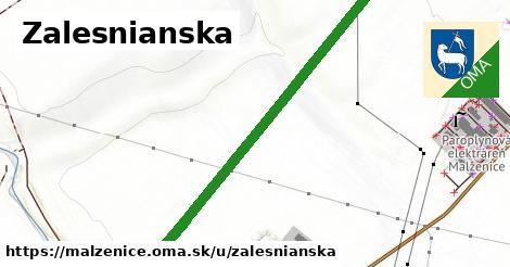 ilustrácia k Zalesnianska, Malženice - 1,45km
