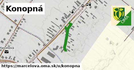 ilustrácia k Konopná, Marcelová - 150m