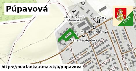 ilustrácia k Púpavová, Marianka - 238m