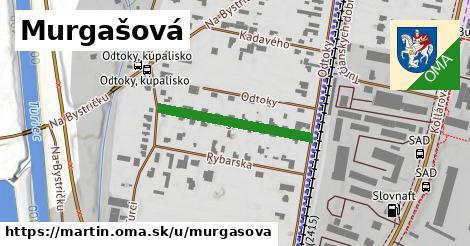 ilustrácia k Murgašová, Martin - 246m