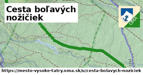 ilustrácia k Cesta boľavých nožičiek, mesto Vysoké Tatry - 2,4km