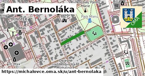 ilustračný obrázok k Ant. Bernoláka, Michalovce