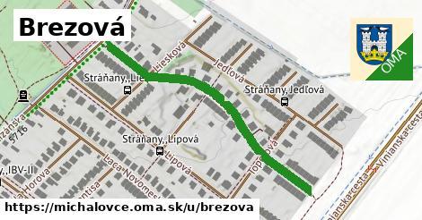 ilustrácia k Brezová, Michalovce - 458m