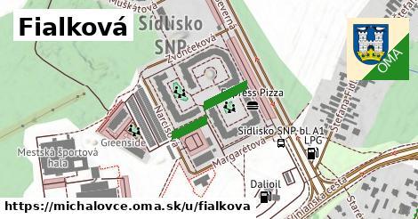 ilustrácia k Fialková, Michalovce - 152m