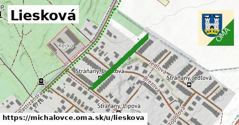 ilustrácia k Liesková, Michalovce - 242m