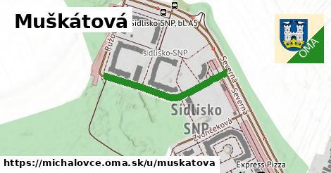 ilustrácia k Muškátová, Michalovce - 295m